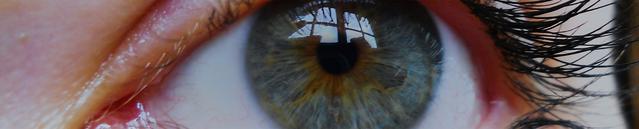 Gros plan des yeux bleus d'une femme.